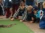 Events/GrosserGarten 2003
