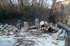 Events/Holz 2005-01-08